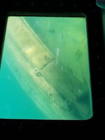 Question consider, glass bottom shipwreck tours