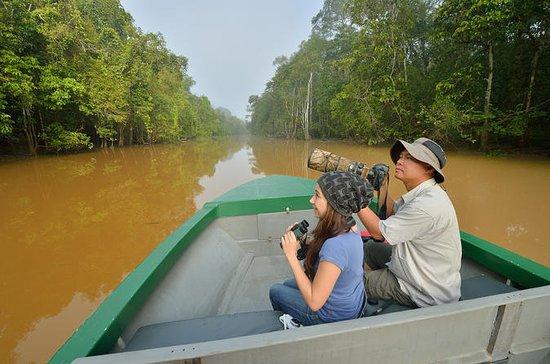 3-daagse tour vanuit Sabah: Sandakan ...