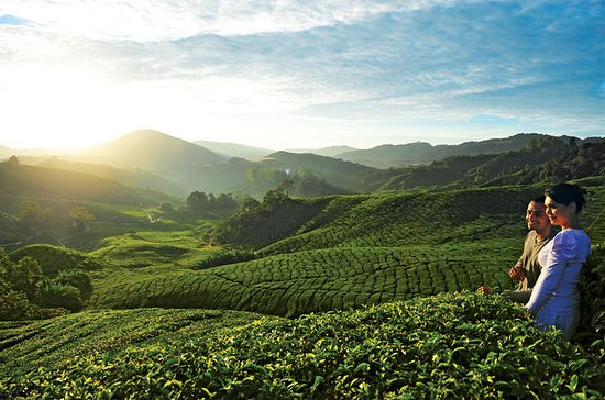 2-Day Cameron Highlands Adventure...