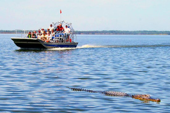 Everglades Airboat Tour with...