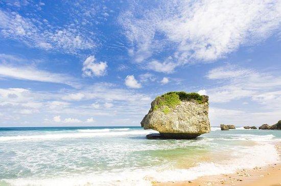Excursión panorámica a Barbados...
