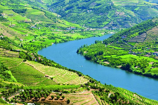 Douro Valley Including Lunch, Wine...