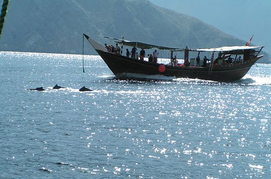 Crucero de observación de delfines...