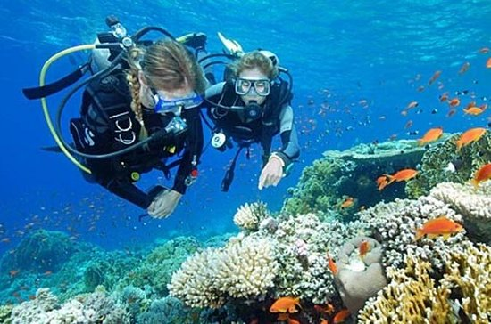 Bali Beginner Scuba Diving Experience