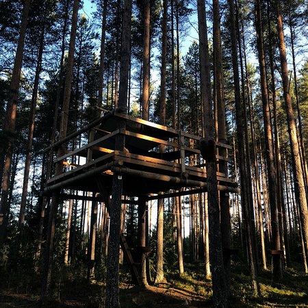 Muhos, فنلندا: photo0.jpg