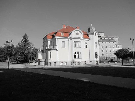 Stargard Szczecinski, Polandia: Willa