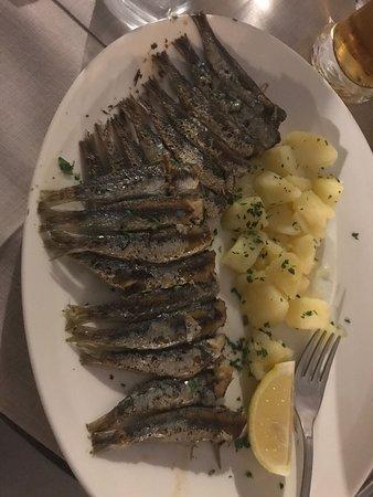 Palit, Croatia: IMG-20180821-WA0004_large.jpg