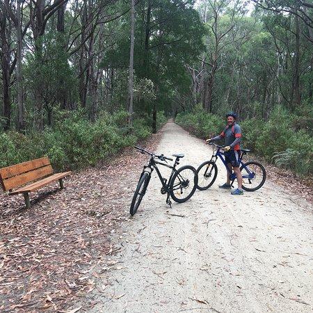 Mirboo North, Australia: photo2.jpg