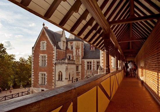 克洛吕斯城堡-达芬奇公园
