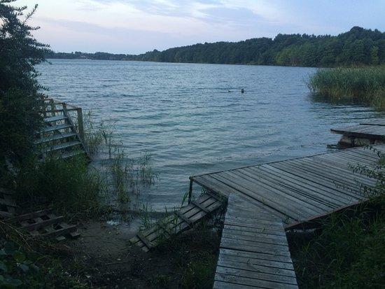 Sinyavino, Russie : частный пляж кемпинга
