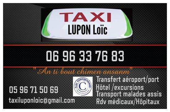Taxi Lupon Loic CARTE DE VISITE 2