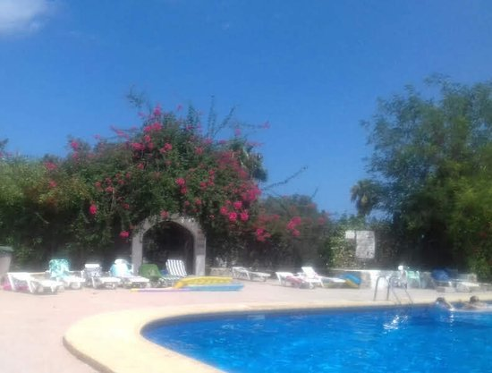 Apartamentos Siesta Mar Updated 2019 Prices Apartment Reviews And Photos Ibiza Santa Eulalia Del Rio Tripadvisor