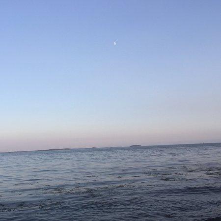 Glenmoor by the Sea: photo9.jpg