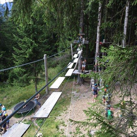 Naturzeit Kletterwald : photo3.jpg