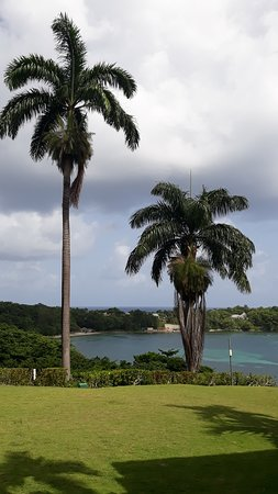 view from the resort;s garden