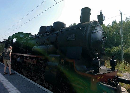 Seebrugg, Deutschland: Steamtrain