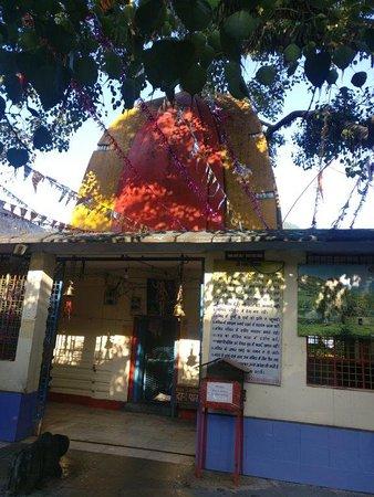 Victoria Dam: Bhimeshwar temple