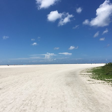 Фотография Tigertail Beach