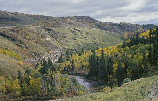 Peace River, Kanada: The Heart River flows through Greene Valley Provincial Park.