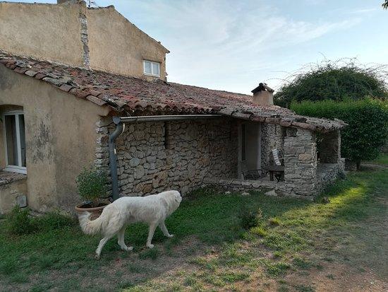 Varages, França: Domaine de la Blaque