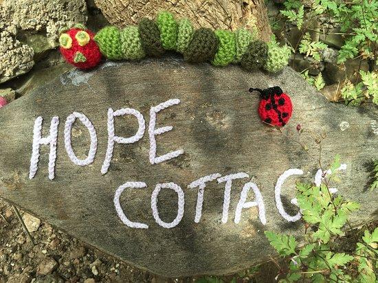 High Bickington, UK: Crocheted decorations.