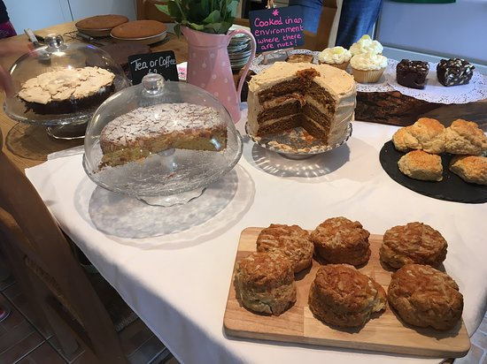 High Bickington, UK: Just some of the enormous cake selection.