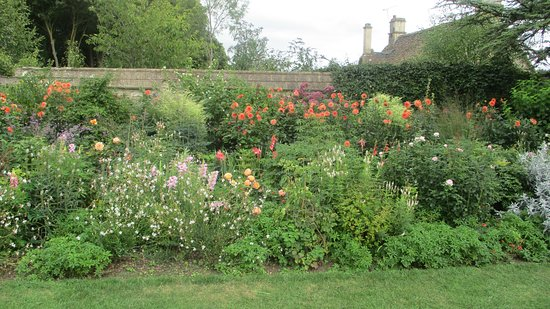 flower bed picture of great chalfield manor melksham tripadvisor