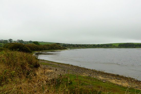 Isla de Anglesey, UK: Views of the lake