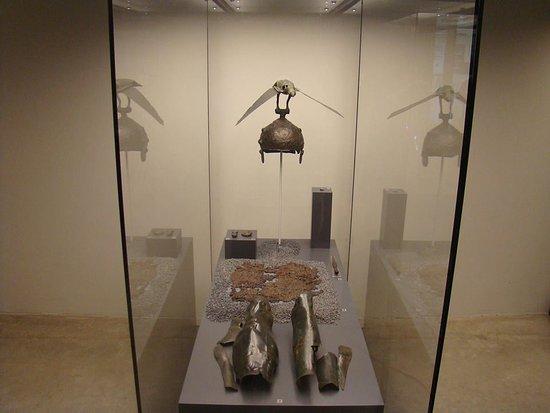 Muzeul Judeţean Satu Mare