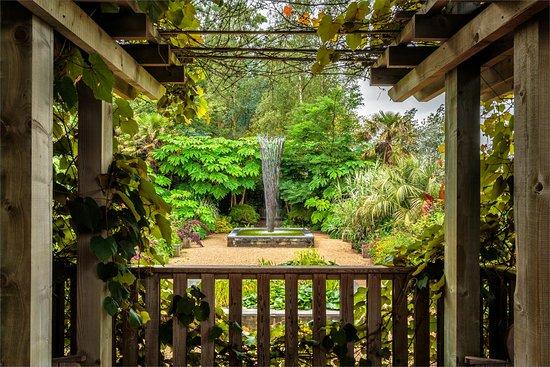 Mediterranean garden - Picture of East Ruston Old Vicarage Garden ...