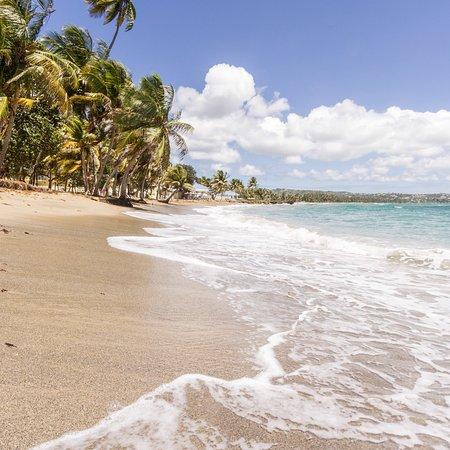 Magdalena Grand Beach & Golf Resort: photo1.jpg