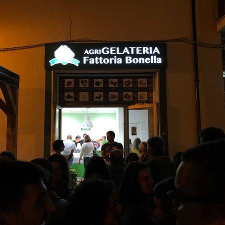 Cetraro Marina, إيطاليا: AgriGelateria Fattoria Bonella