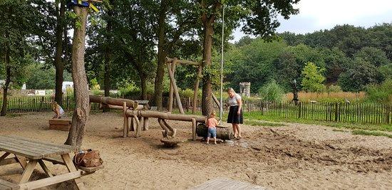 Den Hout, Hà Lan: 20180821_155718_large.jpg