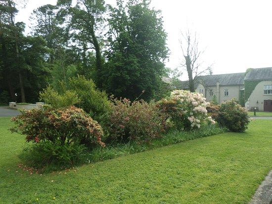 Tullaghan, Irlande: Beautiful gardens