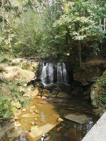 Whatcom Falls Park: IMG_20180820_145001_large.jpg