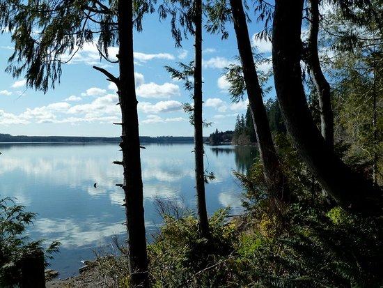 Amanda Park, WA: Outside the cabin, looking at Lake Quinault.