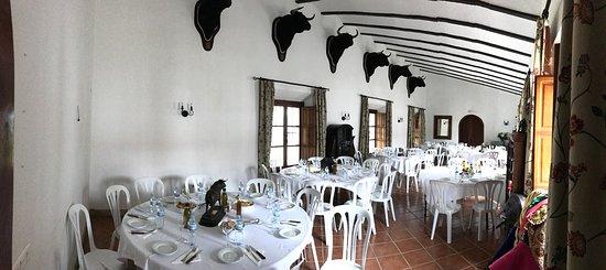 Los Barrios, Spain: Vida del toro
