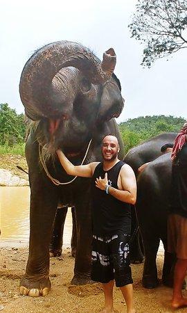 Elephants Retirement 9 Dee: 20180808_102705_HDR~2_large.jpg
