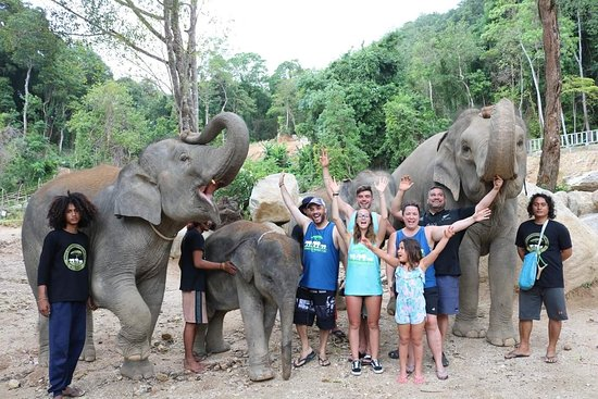 Elephants Retirement 9 Dee: FB_IMG_1533826023501_large.jpg
