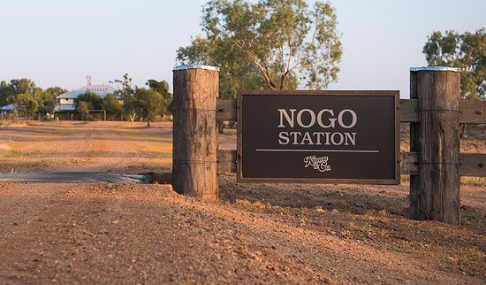Nogo Station Experience