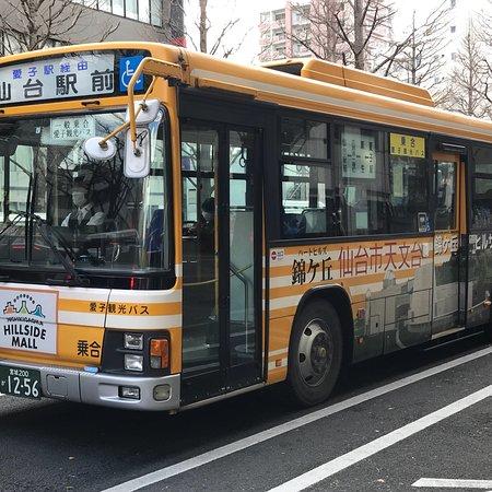 Ayasi Kanko Bus
