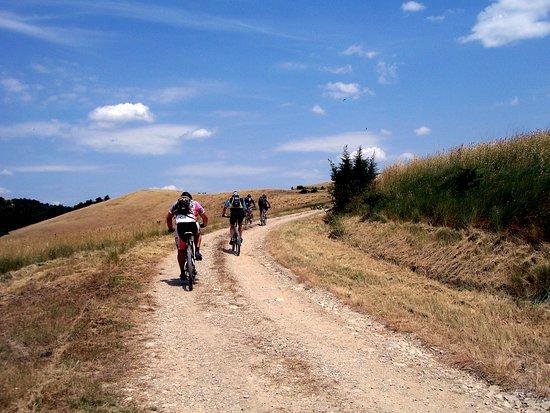 Tuscanybiking