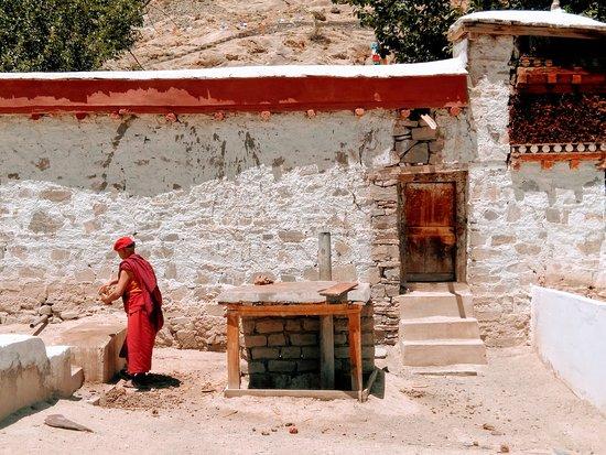 Hemis, الهند: Monk at Hemis monastery