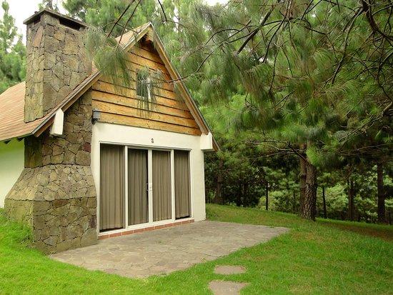 San Ignacio, Le Salvador : Cabaña con dos camas individuales y una matrimonial y un sófa cama. Sala comedor, cocina y baño.