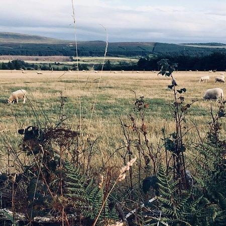 Culloden Moor Inn Picture