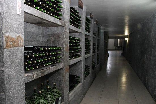 Sao Jose Dos Pinhais, PR: Túnel que vai da loja até a área de produção em  vinhos Don Gabriel