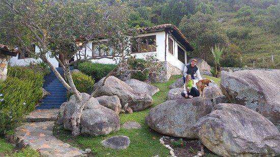 Andean Region, เวเนซุเอลา: sus mascotas