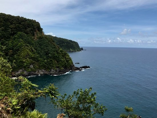 Unique Maui Tours : Scenic view from the Road to Hana