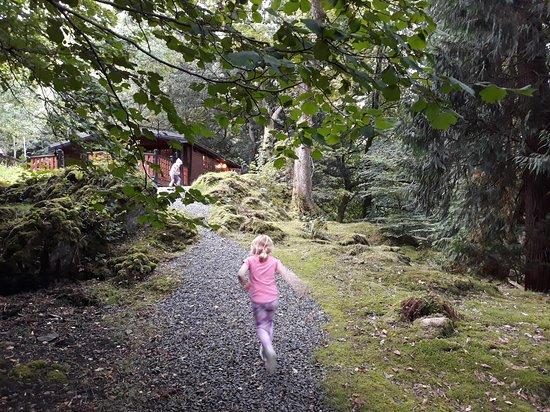 Skelwith Bridge, UK: Fun in the garden of the lodge