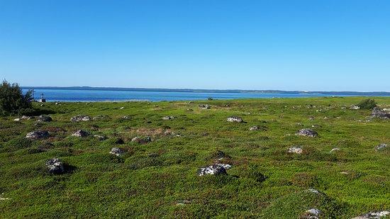 Bolshoi Zayatsky Island ภาพถ่าย